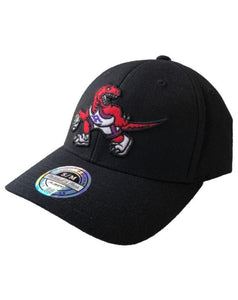 Toronto Raptors Ground Floor Cap