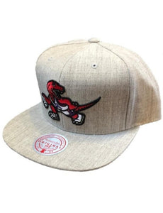 Toronto Raptors Heather Grey Snapback