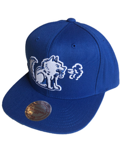 Toronto Huskies Solid Royal Snapback