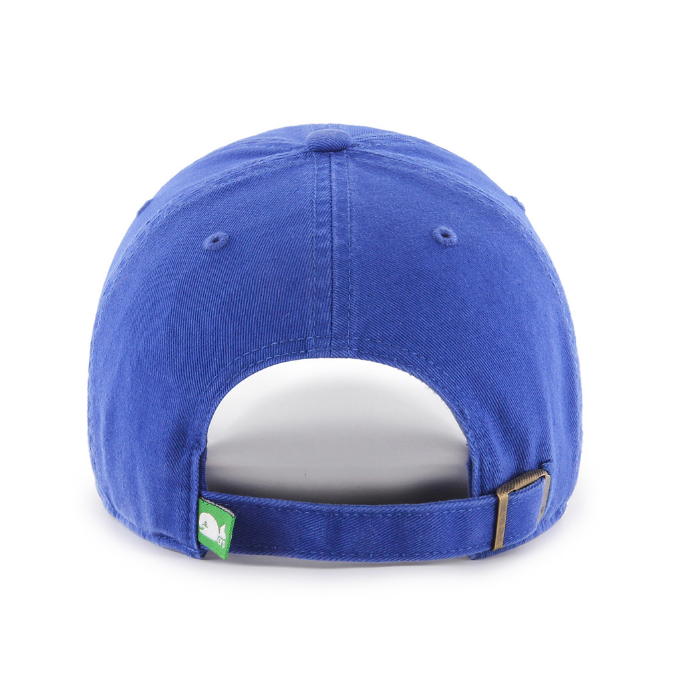 Hartford Whalers Clean Up Cap