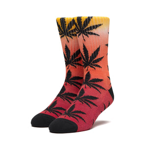 PLANTLIFE GRADIENT DYE SOCK