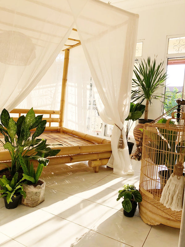 Raakesh Bamboo Canopy Bed
