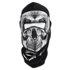 Skull Face Fleece Lined Balaclava
