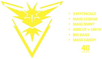 Ultimate Level 40 Team Instinct PoGo Account (INSTANT DELIVERY)