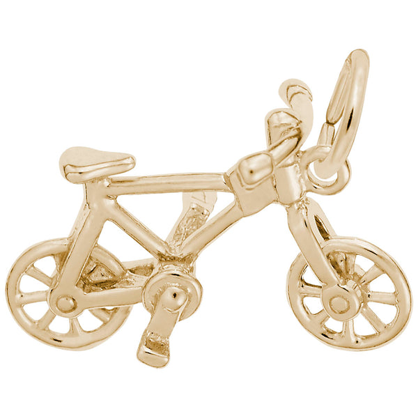 Rembrandt Charms, Bicycle