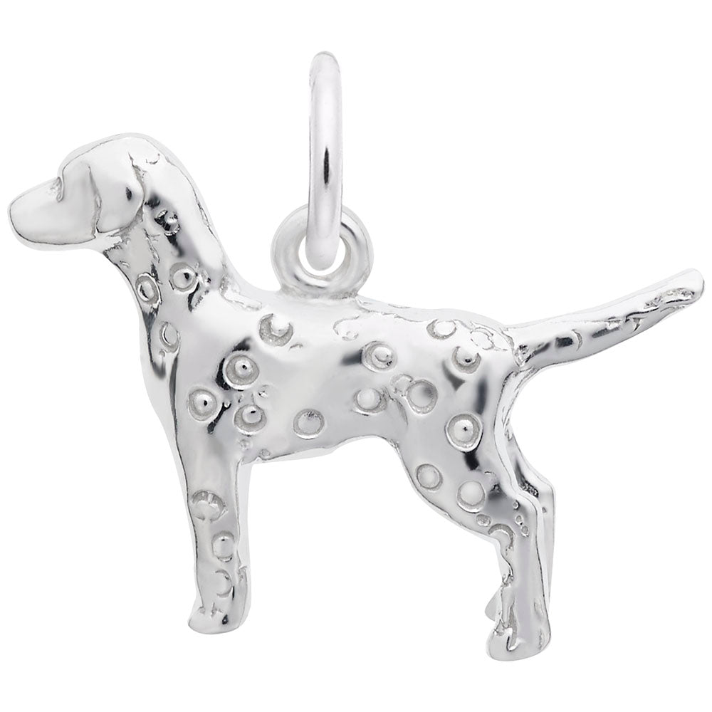 Rembrandt Charms, Dalmatian Dog
