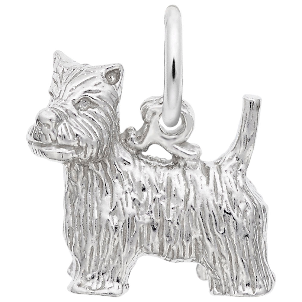 Rembrandt Charms, West Highland Terrier Dog