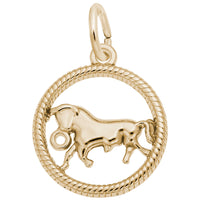 Taurus / 22k Gold Plate on Silver