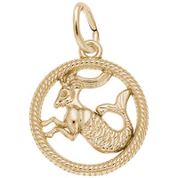 Capricorn / 22k Gold Plate on Silver