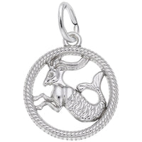 Capricorn / 14k White Gold