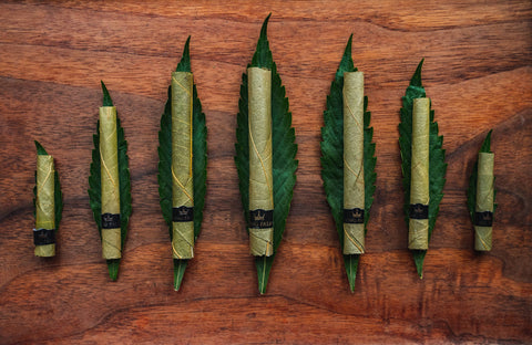 7 King Palm rolls are lined up in increasing and then decreasing size order to create a wave shape. Each is laying on a single leaf on a dark wood table.