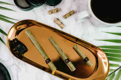 Three King Palm cones in different sizes are displayed on a gold, oval-shaped tray on a white marble counter with King Palm filter tips scattered around.