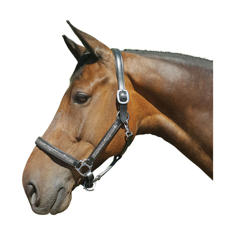 Hy Encrusted Leather Head Collar