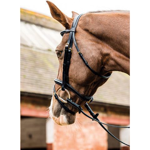 Mark Todd Performance Flash Bridle with Brass Fitting
