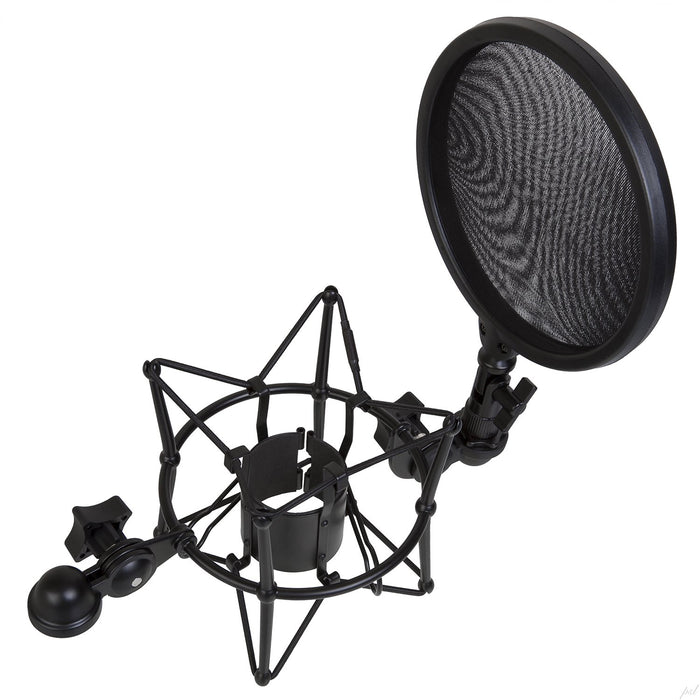 Shock Mount w/ Pop Filter