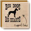 Big Dogs Big Hearts Cropped Ears