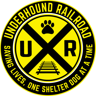 Ladies Junior Fit Crew - Underhound Railroad
