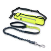 PetGenius Handsfree Dog Leash