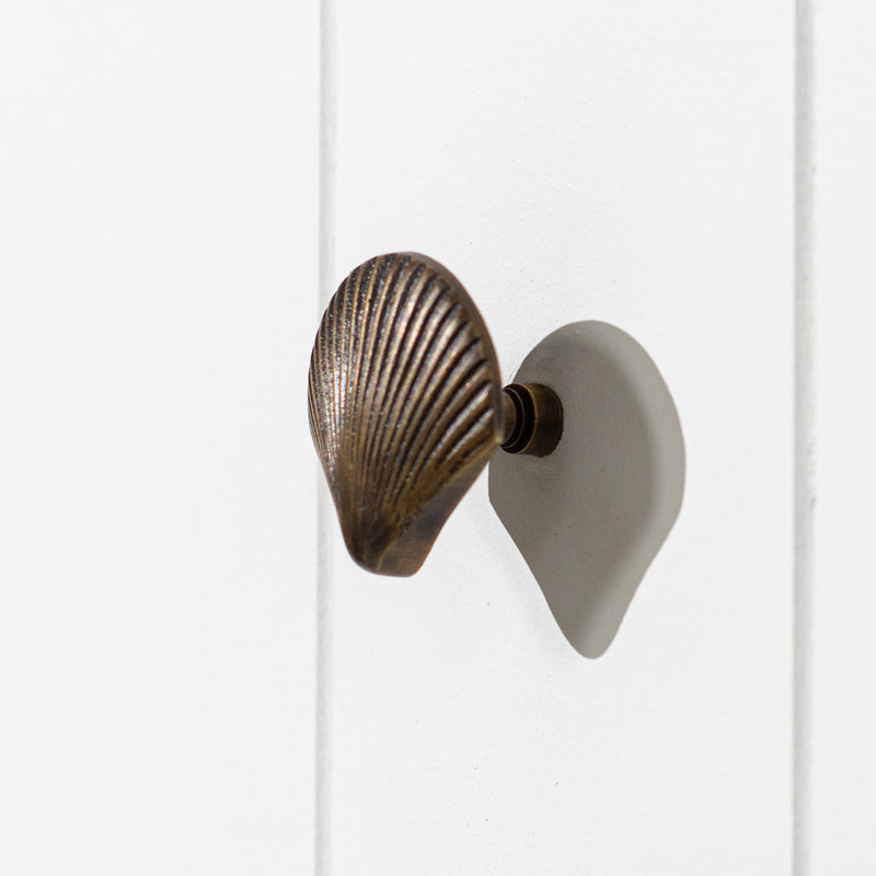 Brass Drawer Knob - Scallop Shell