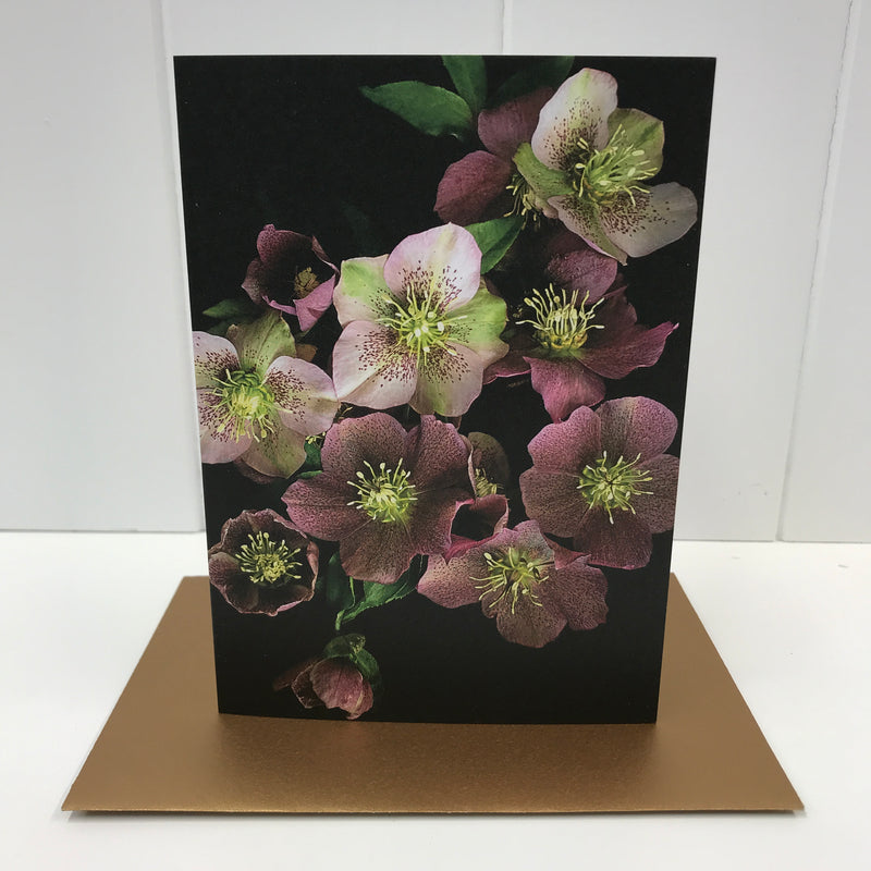 Hellebore Floral Greeting Card