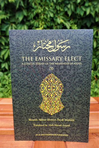 Front cover of the book The Emissary Elect