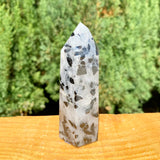 Black Tourmaline in Quartz Point