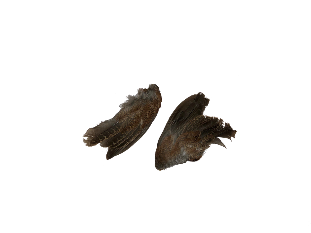 Quail Wings (2-Pack)