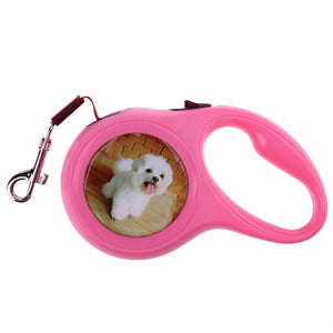 Dog Retractable Leash Outdoor Walks