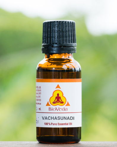 Bio Veda Vachalasunadi Ear Drops - Ayurvedic Products