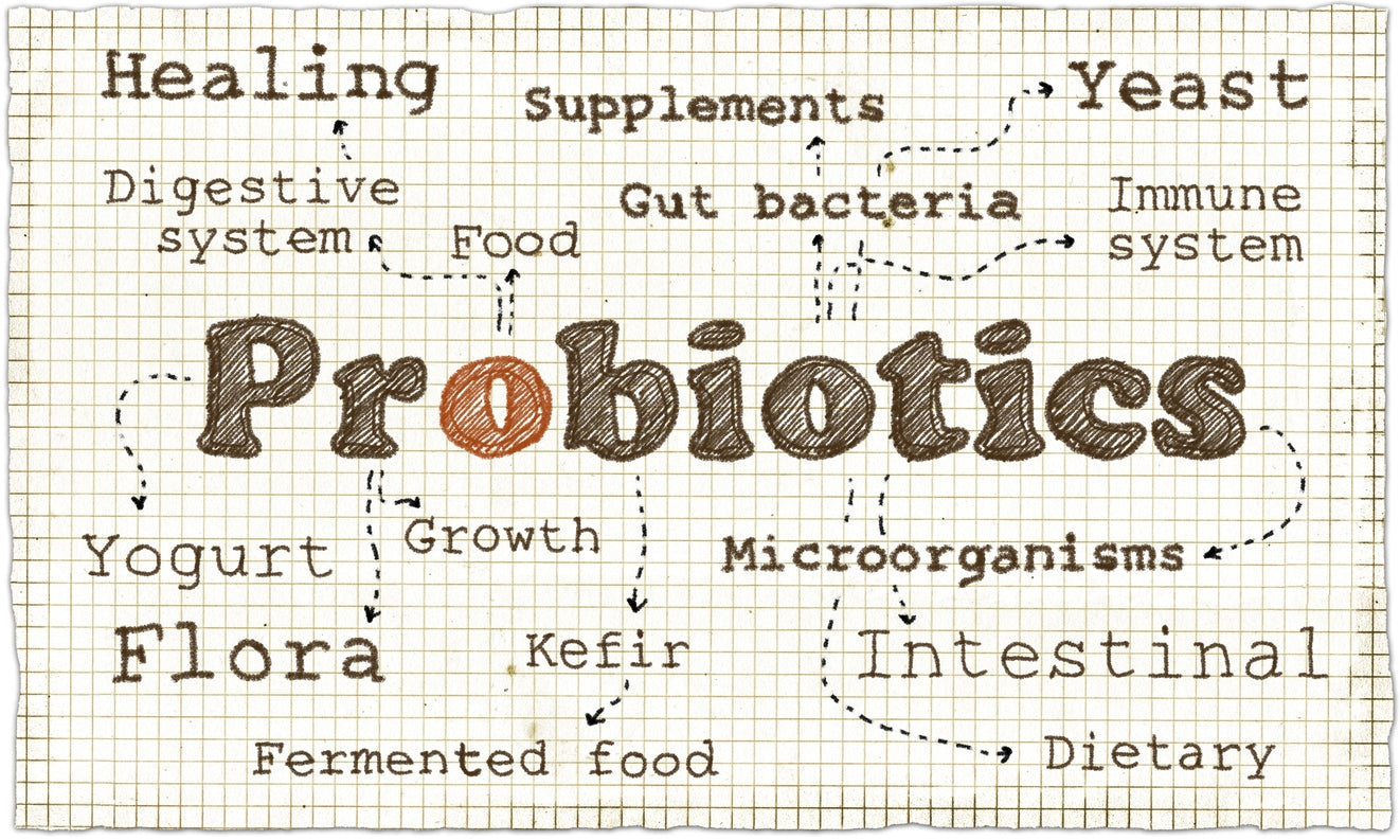 no face probiotics