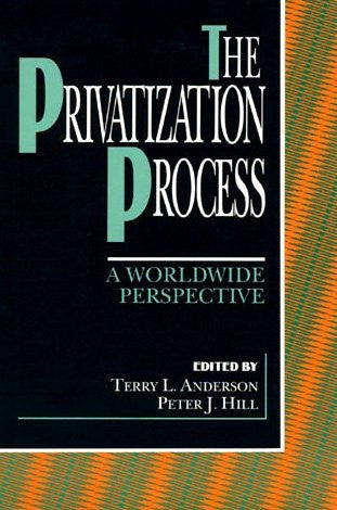 The Privatization Process