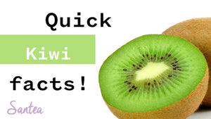 Kiwi facts | 1 Minute Or Less