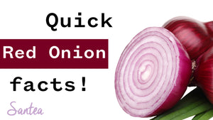 Red Onion Facts | 1 Minute or Less