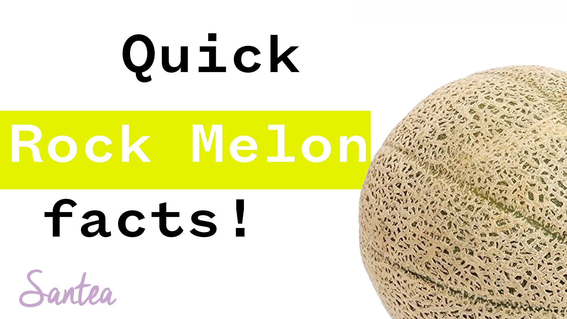 Rockmelon Facts | 1 Minute or Less
