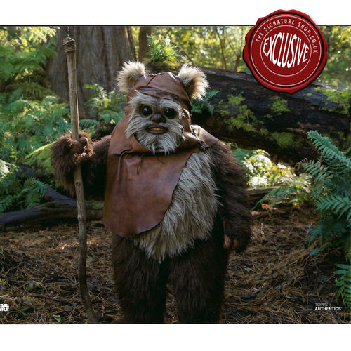 Wicket the Ewok from The Rise of Skywalker 10x8 Photo signed by Warwick Davis