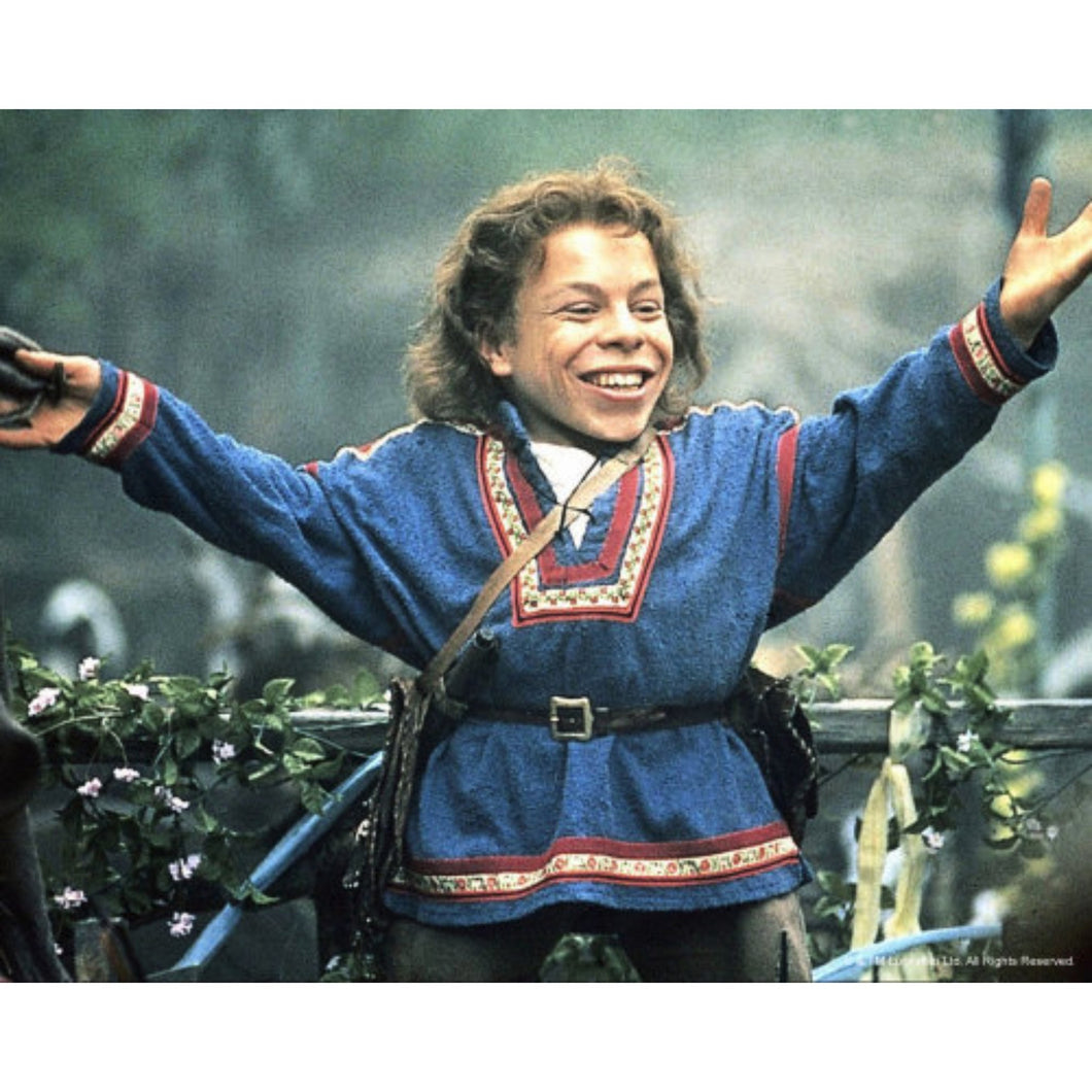 Willow 10x8 Photo signed by Warwick Davis
