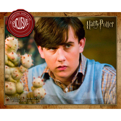 Neville Longbottom 10x8 Photo signed by Matthew Lewis