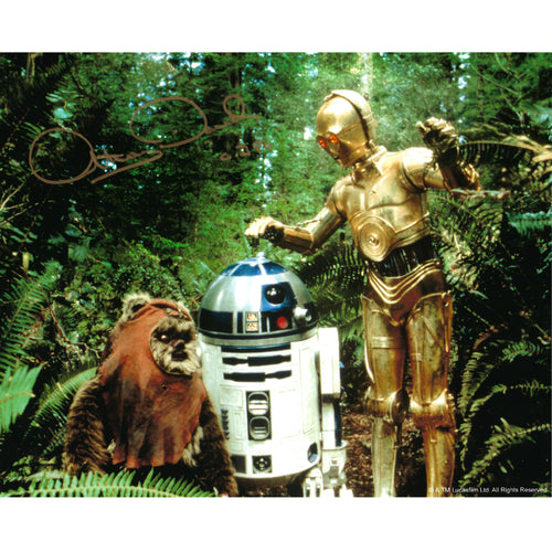 Wicket, R2-D2 & C-3PO 10x8 Photo signed by Warwick Davis & Anthony Daniels