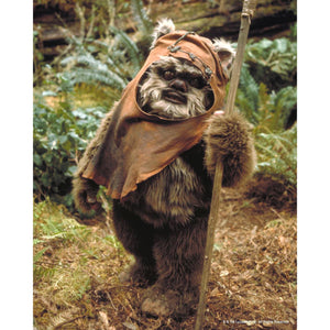 Wicket the Ewok 10x8 Photo signed by Warwick Davis
