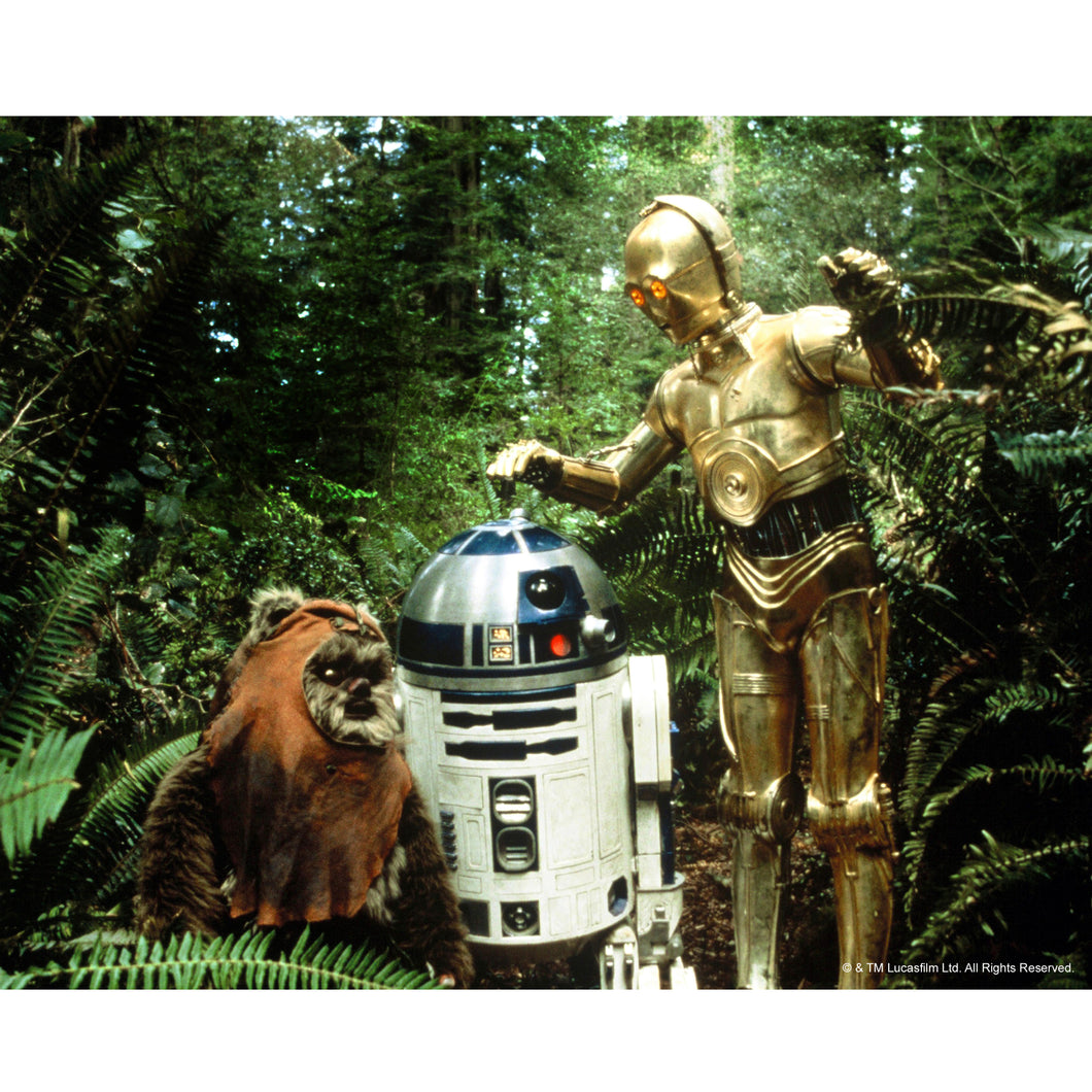 Wicket, R2-D2 & C-3PO 10x8 Photo signed by Warwick Davis