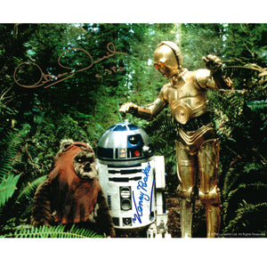 Wicket, R2-D2 & C-3PO 10x8 Photo signed by Kenny Baker, Anthony Daniels & Warwick Davis