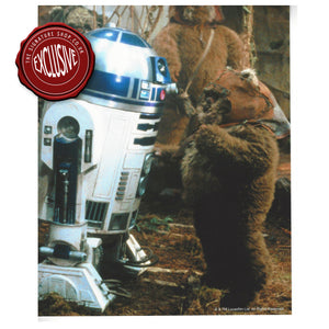 Wicket & R2-D2 10x8 Photo signed by Warwick Davis.