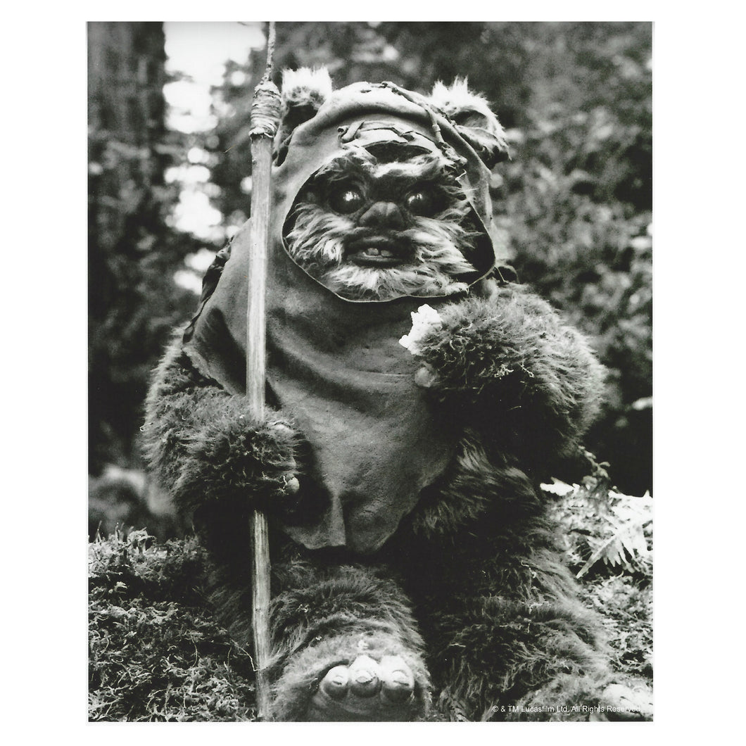 Black & White 10x8  Photograph of Wicket signed by Warwick Davis
