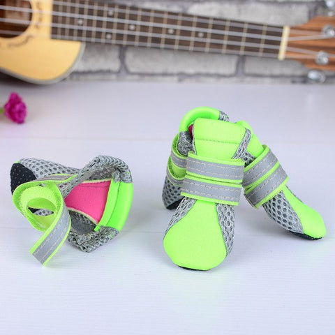 Dog pet shoes - Daily Kreative - Kreative products for beauty and healthy living