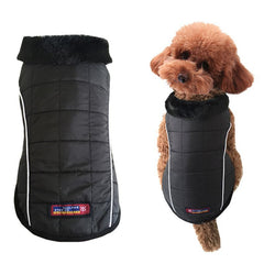 British Pet Dog Black Cotton Warm Coat - Daily Kreative - Kreative products for beauty and healthy living