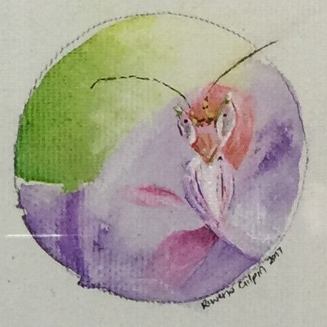 Orchid Mantis | Original Watercolour on canvas 6 x 6 cm