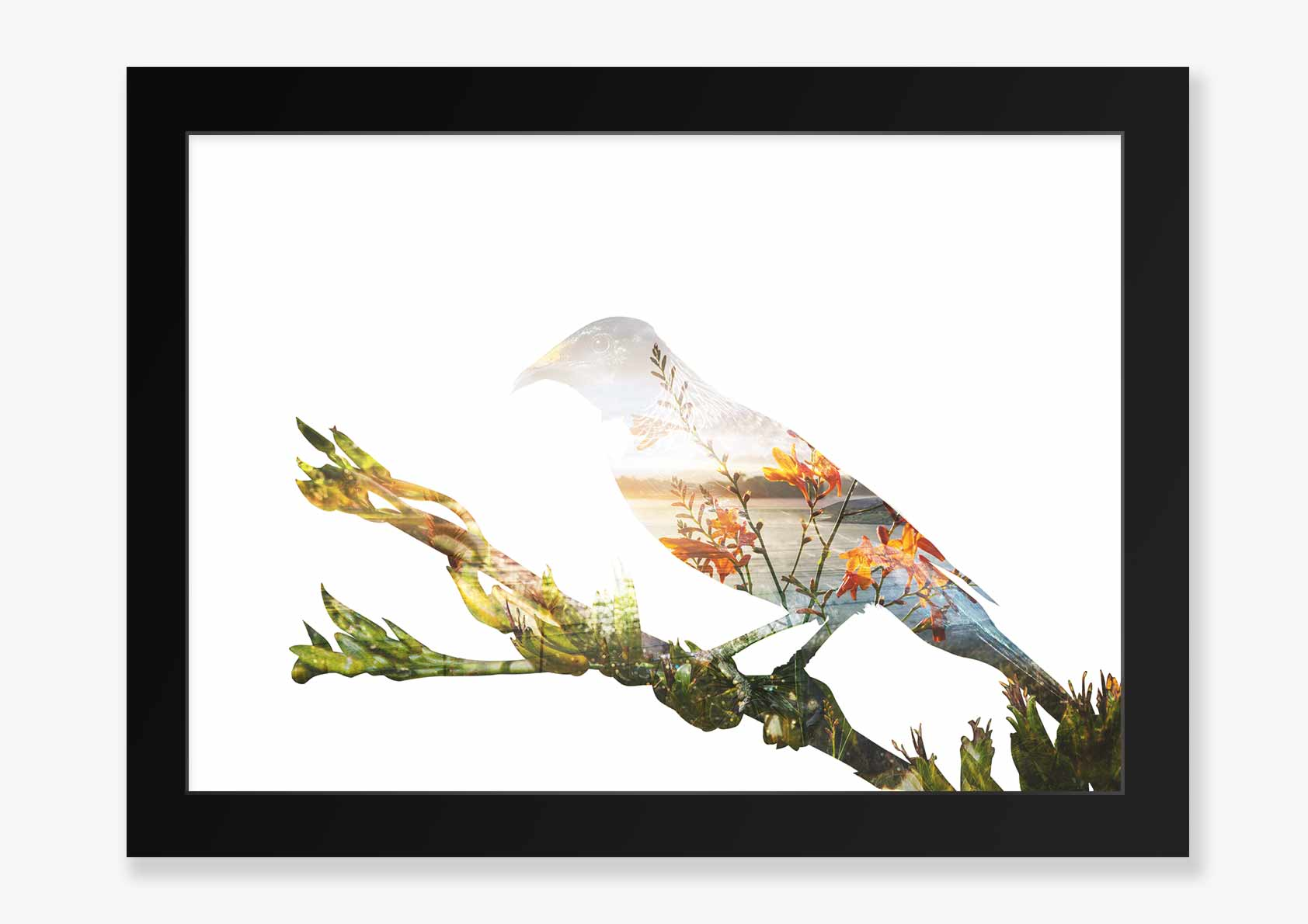 Double Exposure Tui