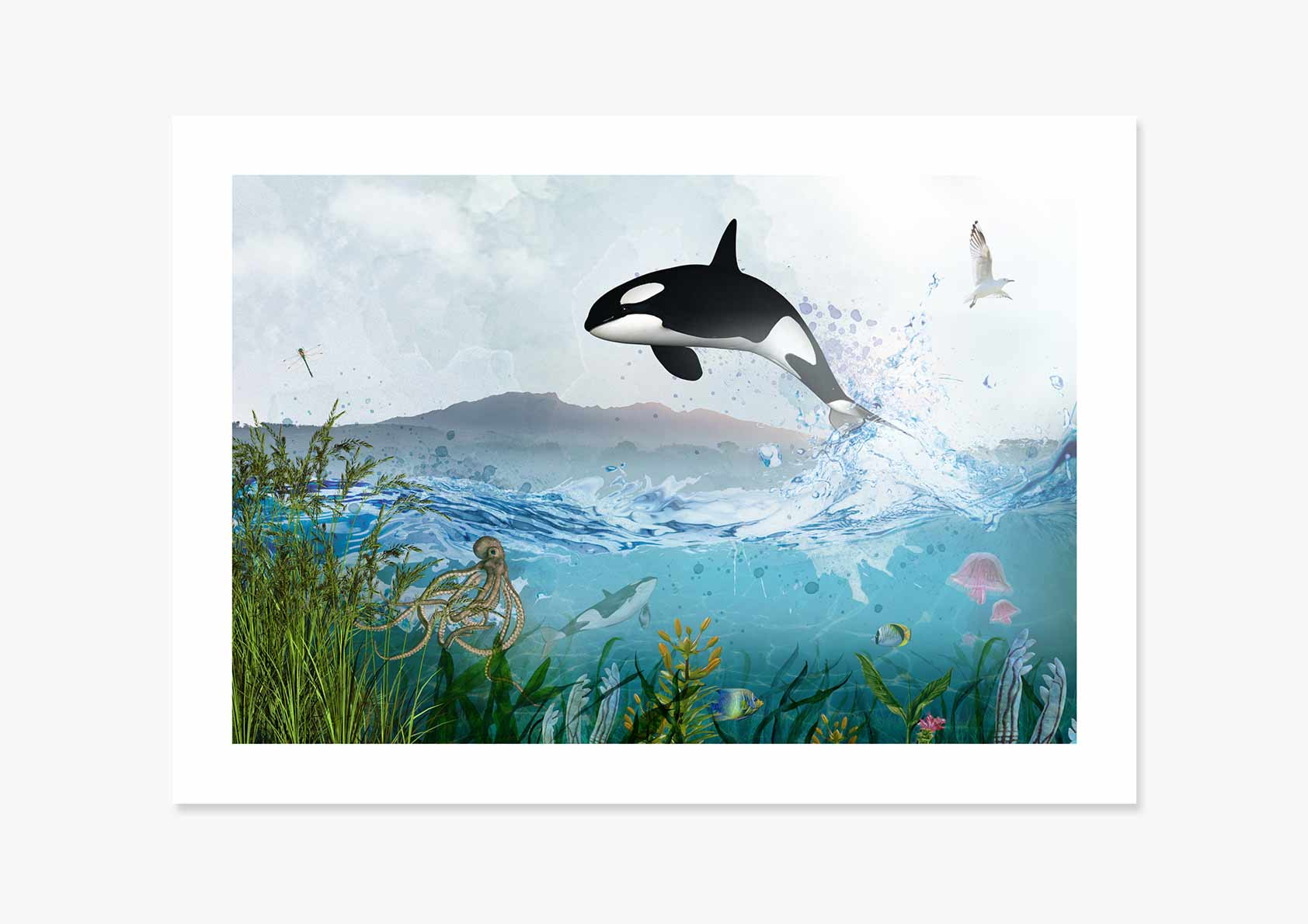 Life Force, Orca