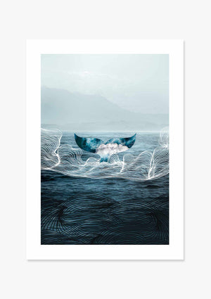 Whale Splash Graphic