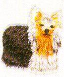 JKM Small Dog with Golden Face Applique (Iron On)
